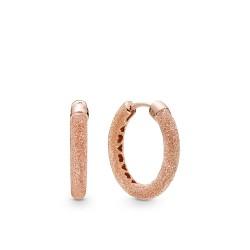 Pandora Earring  Style# 287930
