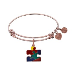 Brass with Pink Finish Autism Awareness Enamel Cha Rm For Angelica Bangle